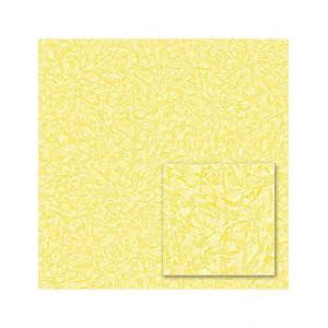 Виниловые обои Paint color 541227 на флизелиновой основе